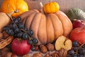 decorative pumpkins and fruits on wood background