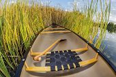 canoe on a lake shore with cattails, late summer in Fort Collins, Colorado, fisheye lens perspective