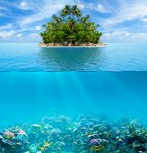 image of horizon  - Underwater coral reef seabed and water surface with tropical island - JPG