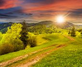 picture of fir  - composite mountain landscape with road on hillside meadow few fir trees and forest on both sides of the road in sunset light - JPG