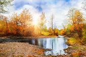 Mountain Stream, Forest Autumn Landscape At Sunset