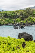 Coast at Wai'anapanapa, Maui