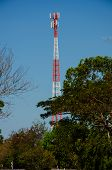 Mobile Telecommunication Post And Forest
