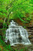 Spingtime Waterfall