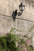 image of vegetation  - Old medieval street lamp on a wall covered by vegetation - JPG