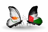Two Butterflies With Flags On Wings As Symbol Of Relations Cyprus And Palestine