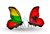 Two Butterflies With Flags On Wings As Symbol Of Relations Lithuania And Albania