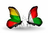 Two Butterflies With Flags On Wings As Symbol Of Relations Lithuania And Madagascar