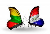 Two Butterflies With Flags On Wings As Symbol Of Relations Lithuania And Paraguay
