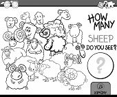 picture of counting sheep  - Cartoon Illustration of Education Counting Game for Coloring Book - JPG