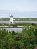pic of martha  - View of the Edgartown Lighthouse on Martha