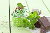 foto of frozen  - Frozen yogurt with mint and dark chocolate - JPG
