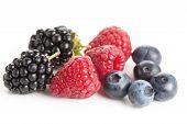 Frutas da floresta