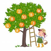 image of numbers counting  - Girl picking orange and counting number one to ten - JPG