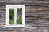picture of vegetation  - Look through a window on a wooden wall - JPG