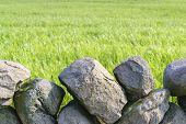 stock photo of stonewalled  - close - JPG