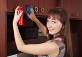 Woman Cleaning  Furniture At Home