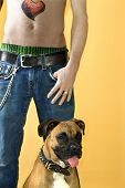 Young adult Caucasian male with Boxer dog.