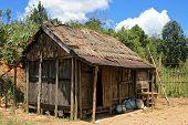 Rustic Hut
