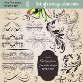 vector set: calligraphic vintage design elements and page decoration - lots of useful elements to em