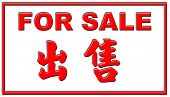 For Sale Sign -Chinese& English