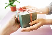 Close-up Of Female Hands Holding A Present. Gift A Present. Flower In The Flower Pot. Present Near L poster