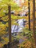 Waterfall With Fall Leaves
