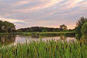 Abend-Teich