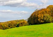 English Green Meadow On A Sunny Day, A Typical Rural Landscape Of The British Countryside, A Rural F poster