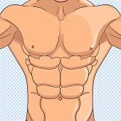 Male Press, The Body Of An Athlete. Bodybuilder, Anatomy Of The Abdominal Muscles Man. Object Pop Ar poster