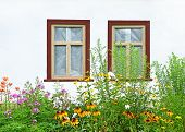 Flowerbed under vintage window