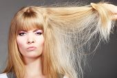 Haircare. Blonde Woman With Her Damaged Dry Hair Angry Face Expression Gray Background poster