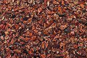 Patrón de semillas de cacao