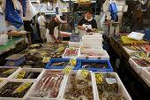 Tsukiji Fischmarkt Tokyo