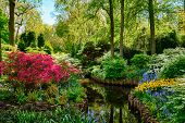 Keukenhof flower garden, also known as the Garden of Europe. One of the worlds largest flower garde poster
