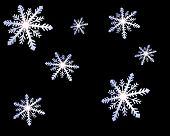 Snowflakes Black Background