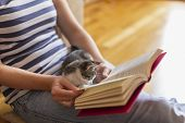 Woman And Kitten Reading A Book poster