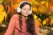 Drive By Song. Enjoy Music Outdoors Fall Warm Day. Audio File. Kid Girl Relaxing Near Autumn Tree Wi poster