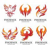 Luxury Phoenix Logo Concept, Best Phoenix Bird Logo Design, Phoenix Vector Logo, Creative Logo Of My poster