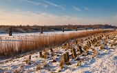 image of hackney  - A snowy embankment in the Netherlands - JPG