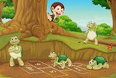 foto of hopscotch  - Turtles playing hopscotch on white  - JPG