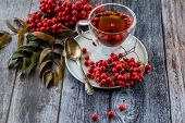Hot Healing Tea, Mountain Ash Tea. Applied With A Lack Of Vitamins, Anemia, Metabolic Disorders. Red poster