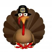picture of fowl  - Toon Thanksgiving Turkey Sitting wearing a Pilgrim hat - JPG