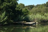 stock photo of dock a pond  - An old dock in a pond on a sunny summer day - JPG