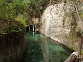 pic of cenote  - view from cenote near Playa del Carmen Mexico - JPG