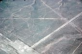 stock photo of geoglyph  - The Nazca Lines are a series of ancient geoglyphs located in the Nazca Desert in southern Peru - JPG