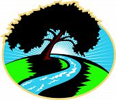 foto of pecan tree  - Illustration of a pecan tree silhouette with winding river stream and sunburst in background don ein retro style - JPG
