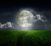 Meadow on background of the moon