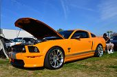 Shelby GT/SC Mustang