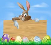stock photo of ester  - Cartoon Easter bunny pointing at blank wooden sign with painted chocolate Easter eggs in green field - JPG